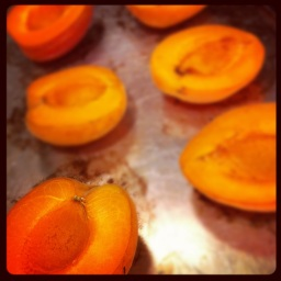 Baked apricots Photo Copyright © Valerie Stride