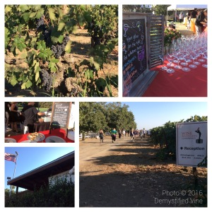 Opening reception at Mohr Frye Ranch